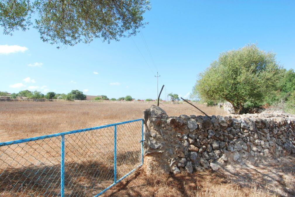 - Rustic plot with basic project between Santanyi and Campos