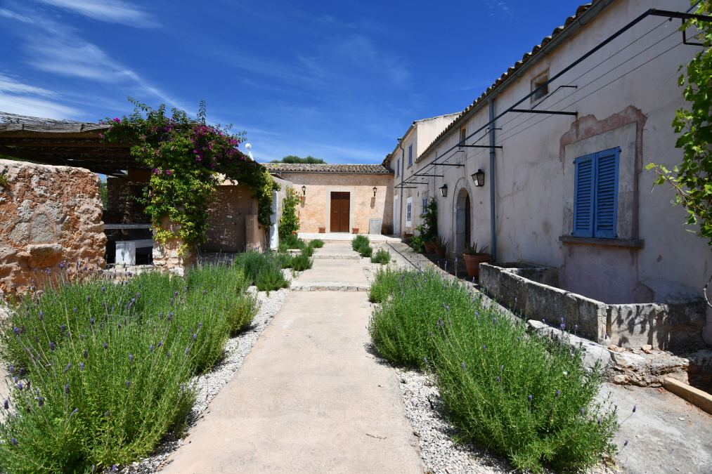 - Renovated country house with charm and character near Santanyi